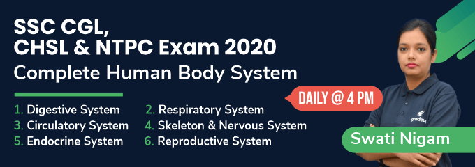 Complete Human Body System