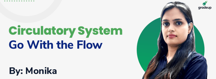Circulatory System : Go With the Flow