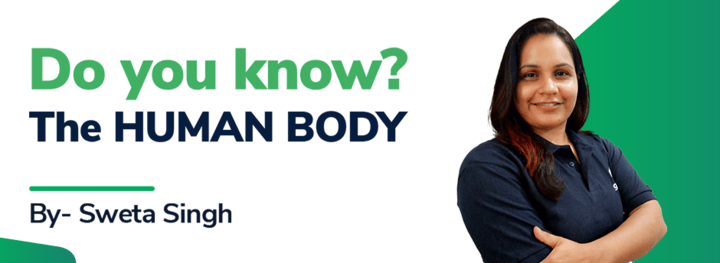 Do you know? The HUMAN BODY