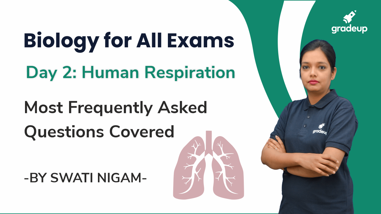 Day 2: Human Respiration | Most Frequently Asked Questions Covered
