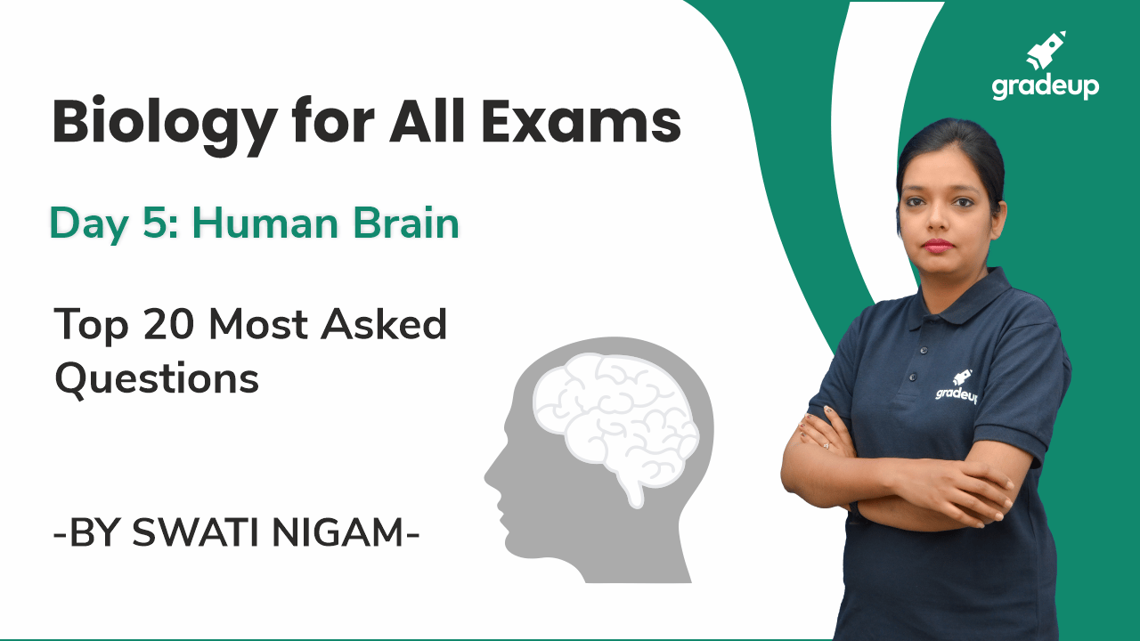 Day 5: Human Brain | Top 20 Most Asked Questions