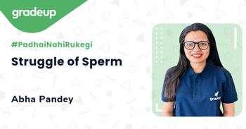 Struggle of Sperm